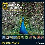 calendario 2014  ng beautiful world 30x30cm-9783832766900