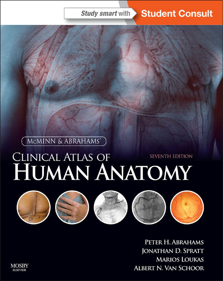 MCMINN AND ABRAHAMS\' CLINICAL ATLAS OF HUMAN ANATOMY E-BOOK EBOOK ...