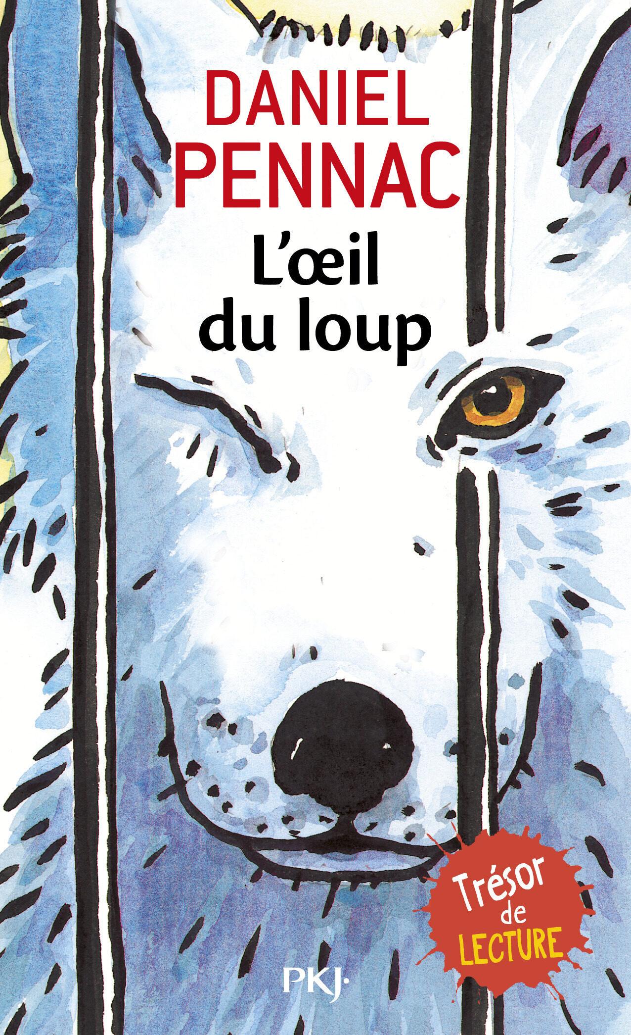 L Oeil Du Loup por Daniel Pennac