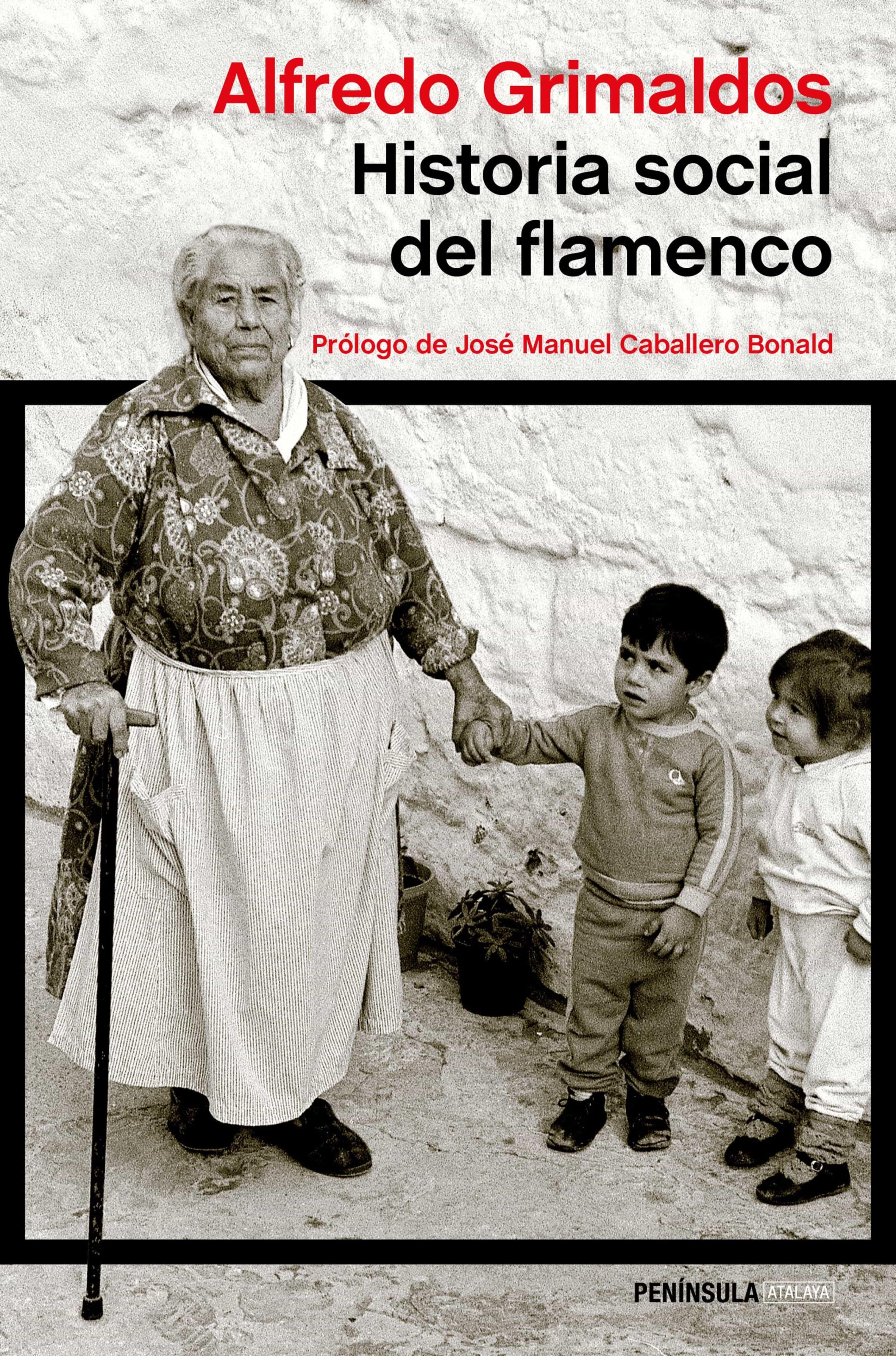 Historia Social Del Flamenco   por Alfredo Grimaldos