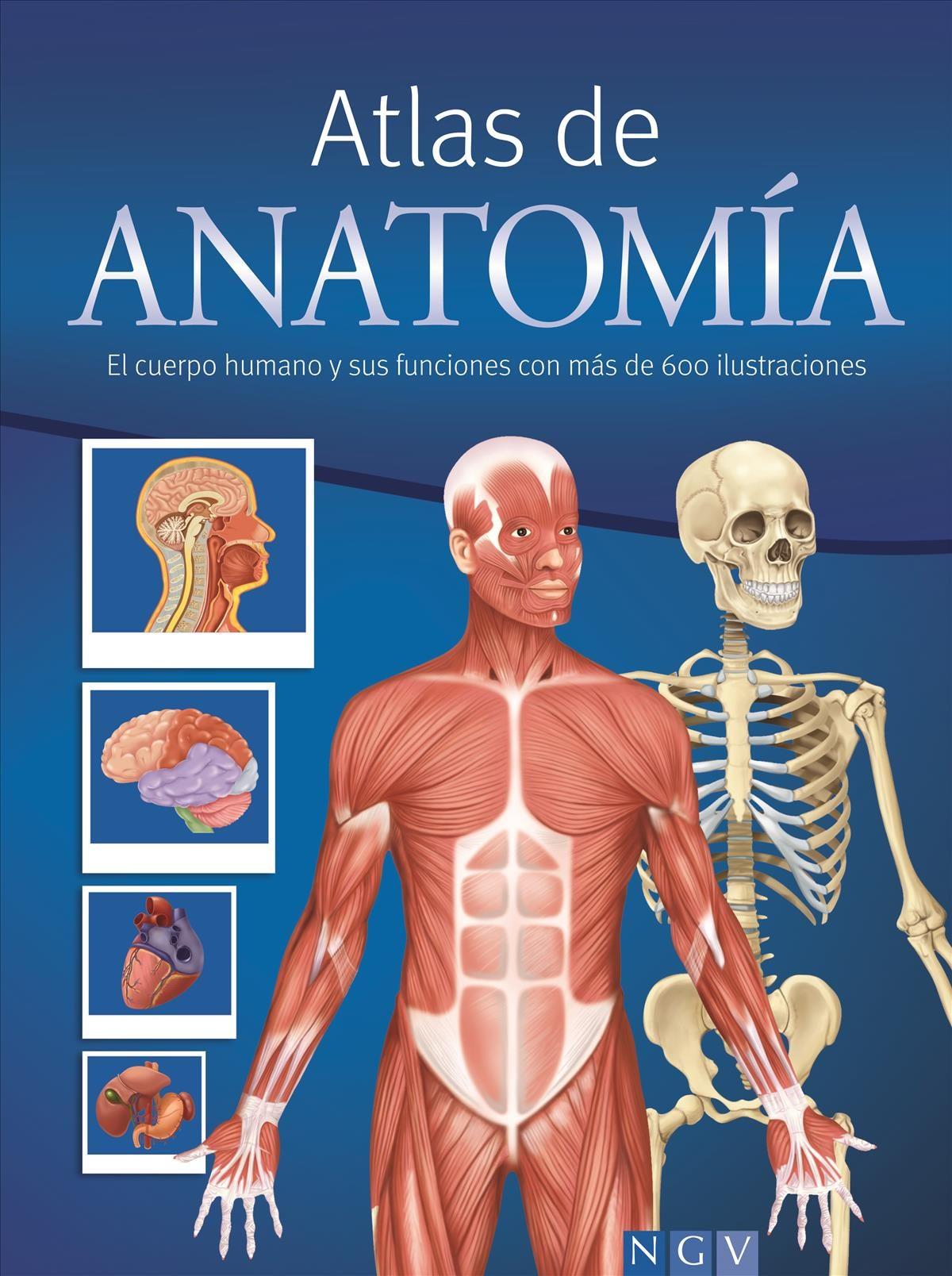 ATLAS DE ANATOMIA (RÚSTICA) | VV.AA. | Comprar libro 9783625006114