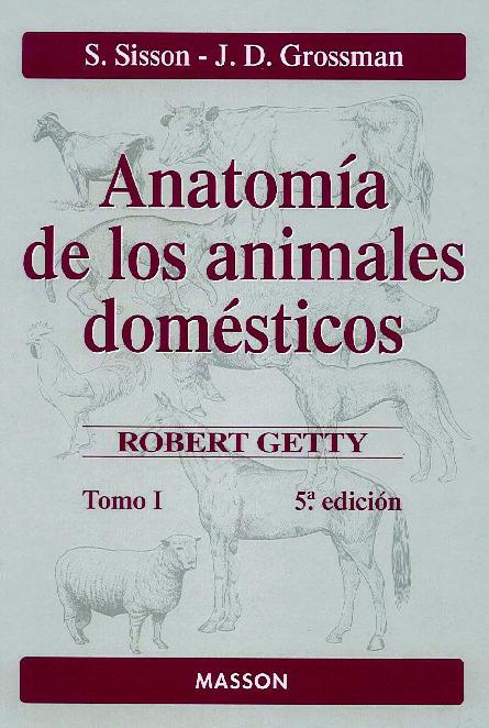 ANATOMIA DE LOS ANIMALES DOMESTICOS TOMO I (5ª ED.) | S. SISSON ...