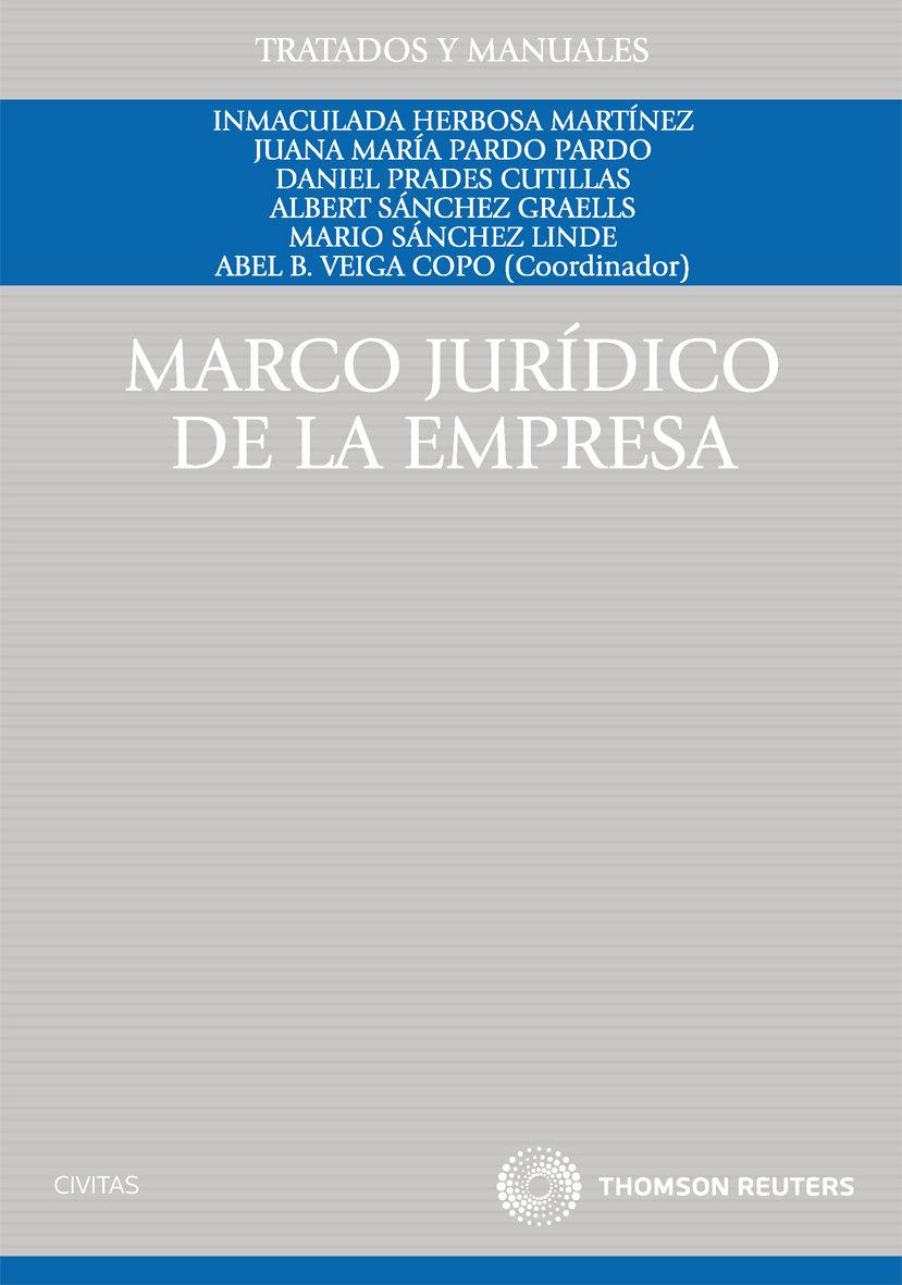 MARCO JURIDICO DE LA EMPRESA | ABEL B. VEIGA COPO | Comprar libro ...