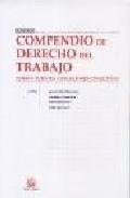 Compendio De Derecho Del Trabajo. Tomo I: Fuentes Y Relaciones Co Lectivas por Ignacio Albiol Montesinos epub