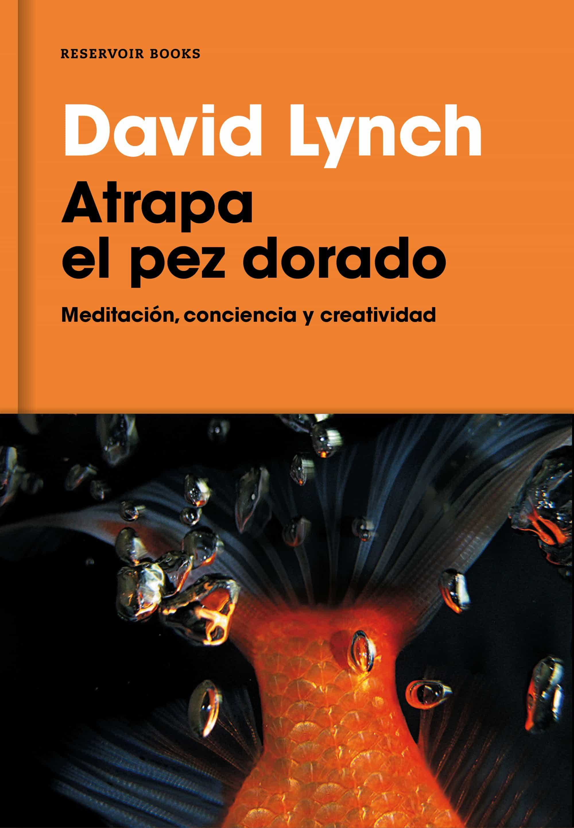 atrapa el pez dorado david lynch pdf