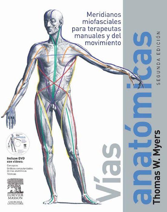 Lujoso Trenes De Anatomía Tom Myers Embellecimiento - Anatomía de ...