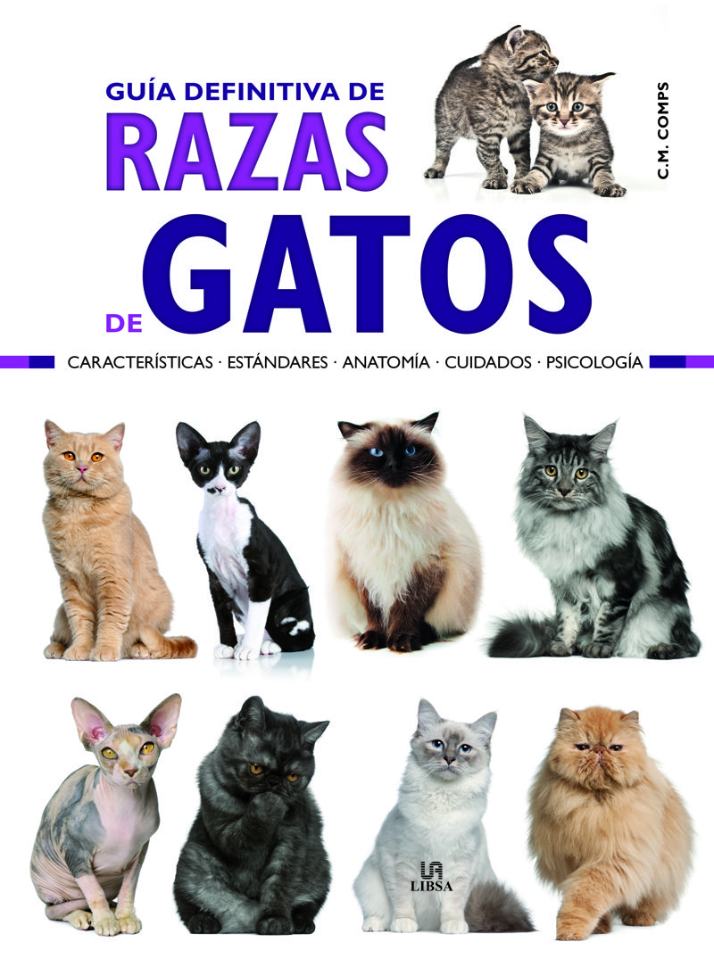 GUIA DEFINITIVA DE RAZAS DE GATOS: CARACTERISTICAS, ESTANDARES ...