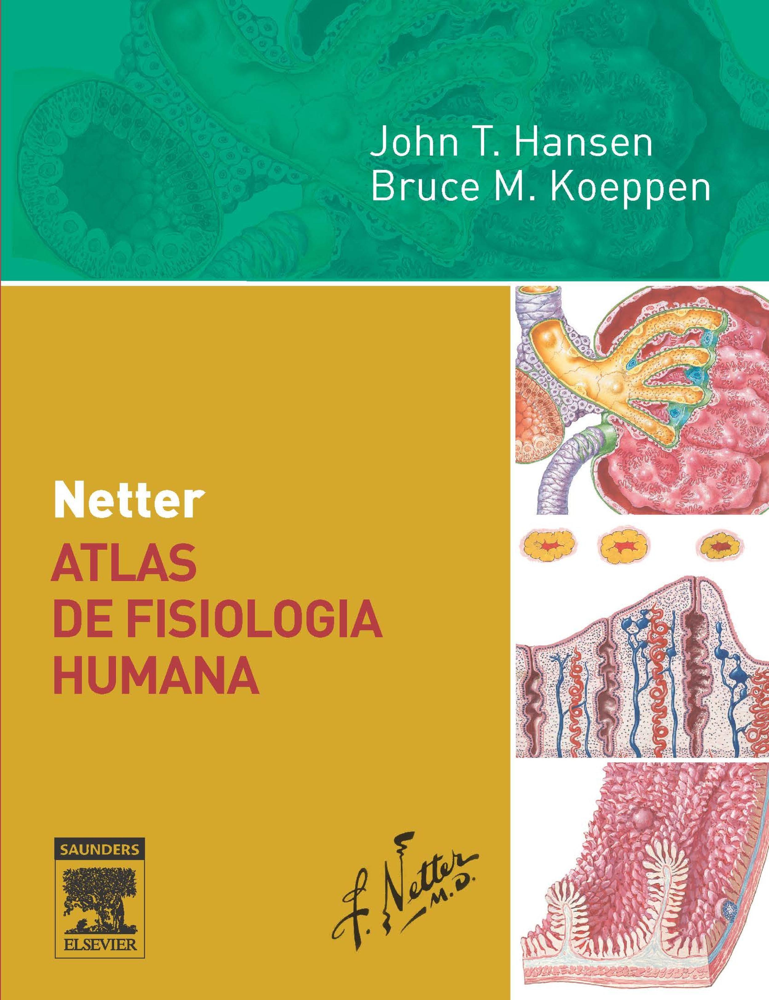 NETTER ATLAS DE FISIOLOGIA HUMANA EBOOK | JOHN HANSEN | Descargar ...