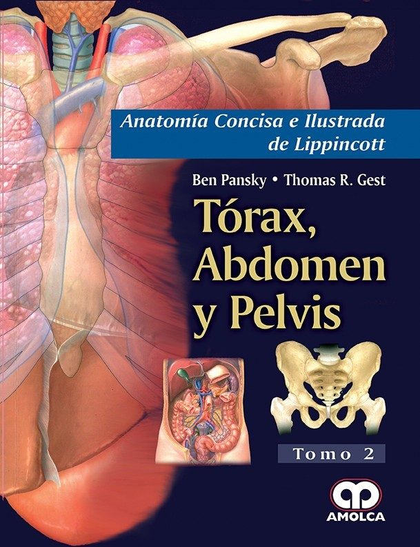 ANATOMIA CONCISA E ILUSTRADA DE LIPPINCOTT, VOL. 2: TORAX, ABDOMEN Y ...