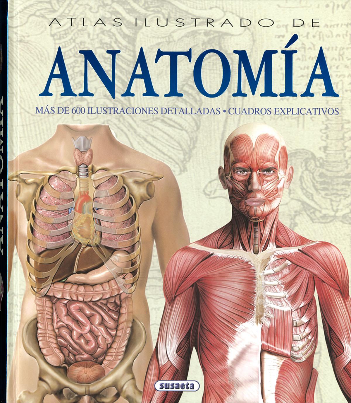 ATLAS ILUSTRADO DE ANATOMIA | ADRIANA RIGUTTI | Comprar libro ...