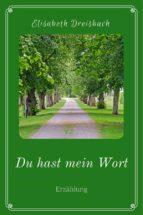 du hast mein wort (ebook)-9783958931404