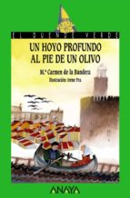 un hoyo profundo al pie de un olivo m⪠carmen bandera 9788466717304