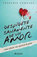 despídete sanamente de un amor (ebook)-joseluis canales-9786077473114