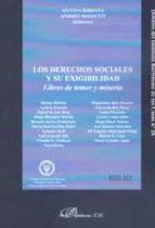 los derechos sociales y su exigibilidad-silvina ribotta-andres rossetti-9788490854914