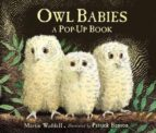 owl babies martin waddell 9781406352344