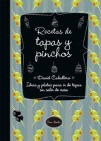 recetas de tapas y pinchos-david caballero puig-9788416245154