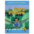 macmillan children s readers: 2 pat s picture (int)-9781405057264