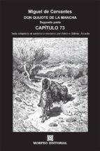don quijote de la mancha. segunda parte. capítulo 73 (texto adaptado al castellano moderno por antonio gálvez alcaide) (ebook)-cdlap00002664