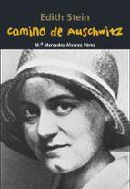 camino a auschwitz-mª mercedes alvarez perez-9788421848074