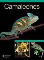 camaleones-dominik kieselbach-9788425517174
