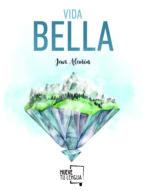 vida bella javier alañon 9788494639074