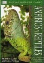 guia de los reptiles y anfibios de la peninsula iberica, baleares y canarias-a. maso-m. pijoan-9788428213684