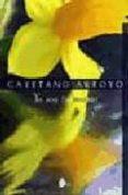 YO SOY TU MISMO - 9788486221034 - CAYETANO ARROYO