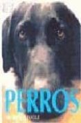 PERROS - 9788428213264 - BRUCE FOGLE