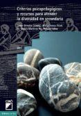 criterios psicopedagógicos y recursos para atender la diversidad en secundaria (ebook)-javier onrubia revuelta-9788499801094