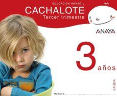Emprende2020.es Cachalote 3 Años. Tercer Trimestre. Galicia Educación Infantil 3-5 Años Image