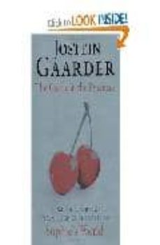 the castle in the pyrenees-jostein gaarder-9780297859444