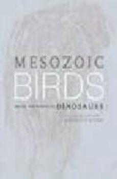 mesozoic birds: above the heads of dinosaurs-9780520200944