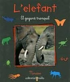 Titantitan.mx L Elefant Image
