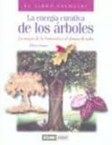 Trailab.it La Energia Curativa De Los Arboles: La Magia De La Naturaleza Al Alcance De Todos Image