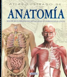 Ebooks gratuitos para descargar uk ATLAS ILUSTRADO DE ANATOMIA de ADRIANA RIGUTTI 9788430534784 iBook ePub PDB