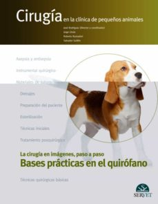 Libros en línea gratis sin descarga leer en línea BASES PRACTICAS EN QUIROFANO FB2 de JOSÉ RODRÍGUEZ GÓMEZ