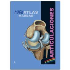 Descargar libros google mac ARTICULACIONES (MAXI ATLAS 5) (Spanish Edition) de  9788417184094