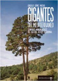 Lofficielhommes.es Gigantes Del Mediterraneo.coníferas Monumentales Del Sistema Ibérico Meridional Image