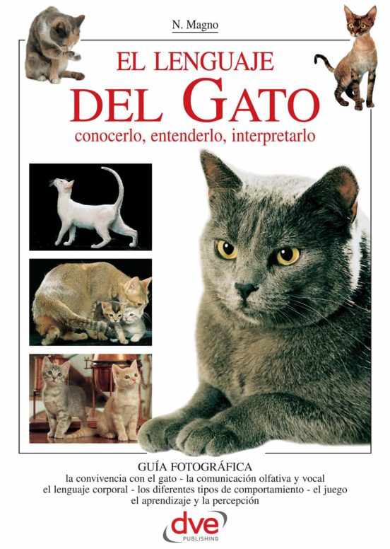 livro idioma felino silvia komatsu