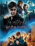 pack harry potter (1-8) + animales fantásticos - dvd --8420266011848